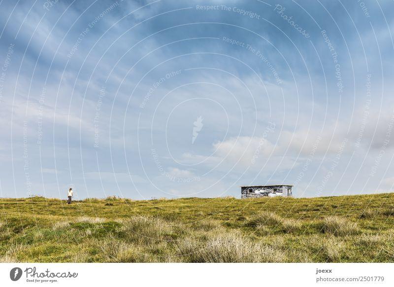 Frau läuft auf weiter, grüner Wiese zu Hütte am Horizont unter blauem Himmel Haus Sommer Häuschen Flachdach Farbfoto Tag Schönes Wetter spazieren laufen flach