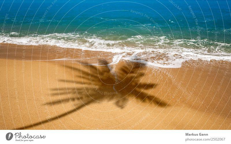 Strand mit Schatten einer Palme Natur Ferien & Urlaub & Reisen Sommer Meer Erholung gelb Hintergrundbild Sand Wellen Süden typisch