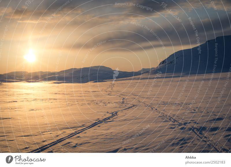 Sonnenuntergang im polaren Raum, einsame Skispuren Himmel Landschaft ruhig Winter Ferne kalt Wege & Pfade Schnee Freiheit Horizont frei Eis Abenteuer Ewigkeit