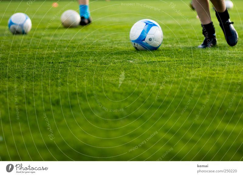 Training grün schwarz Sport Gras Fußball laufen Fußball Sportrasen Fitness Sport-Training Sportveranstaltung Sportler Fußballplatz Ballsport Sportstätten Fußballschuhe