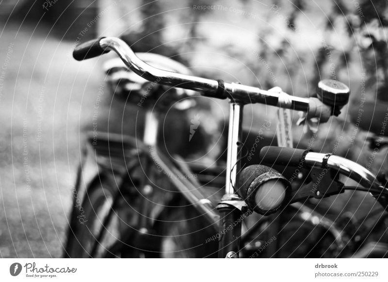 Fahrrad alt schwarz Fahrrad Klima Energiewirtschaft Verkehr kaputt retro fahren Dorf Stadtzentrum Klimawandel Personenverkehr Altstadt Verkehrsmittel Billig