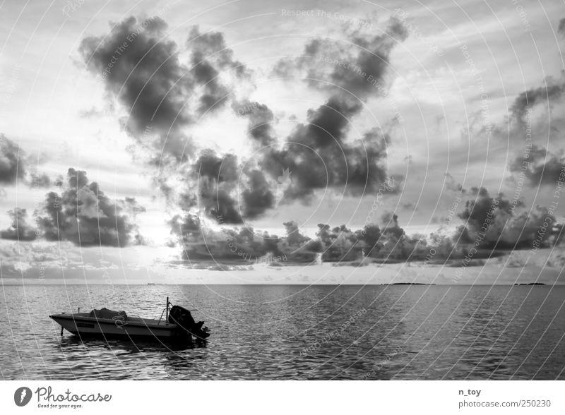 turning south Natur Sommer Ferien & Urlaub & Reisen Meer Wolken Ferne Erholung Freiheit Glück träumen Wasserfahrzeug Zufriedenheit Ausflug frei Insel Wohlgefühl
