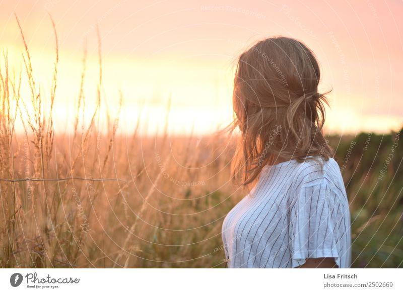 Sonnenuntergang, Feld Ferien & Urlaub & Reisen Frau Erwachsene 1 Mensch 18-30 Jahre Jugendliche Umwelt Natur Sonnenaufgang Schönes Wetter Sträucher