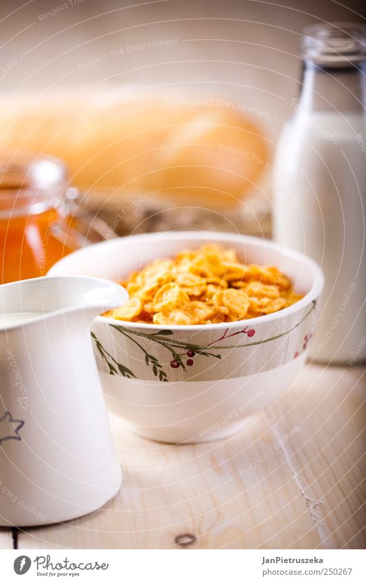 Lebensmittel frisch Getreide Frühstück Brot Bioprodukte