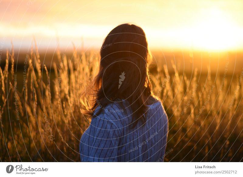 Sonnenuntergang, Frau, Feld Ferien & Urlaub & Reisen Tourismus Junge Frau Jugendliche 1 Mensch 18-30 Jahre Erwachsene Umwelt Natur Sträucher blond langhaarig