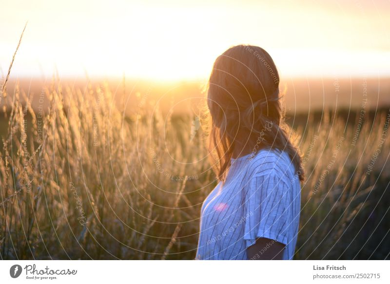Junge Frau blickend zum Sonnenuntergang. Ferien & Urlaub & Reisen Tourismus Sommerurlaub Jugendliche 1 Mensch 18-30 Jahre Erwachsene Natur Landschaft Sträucher
