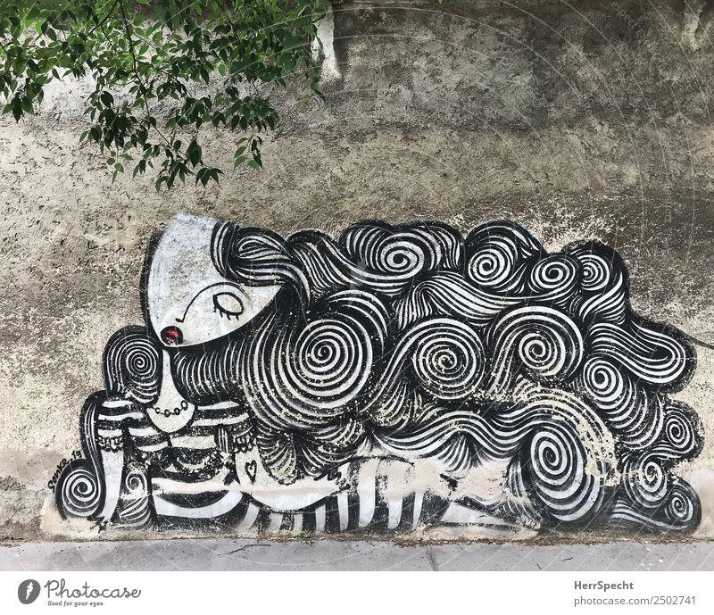 great hair day Mauer Wand Graffiti außergewöhnlich trist Stadt grau Figur Haare & Frisuren Frauengesicht Farbfoto Gedeckte Farben Außenaufnahme Menschenleer