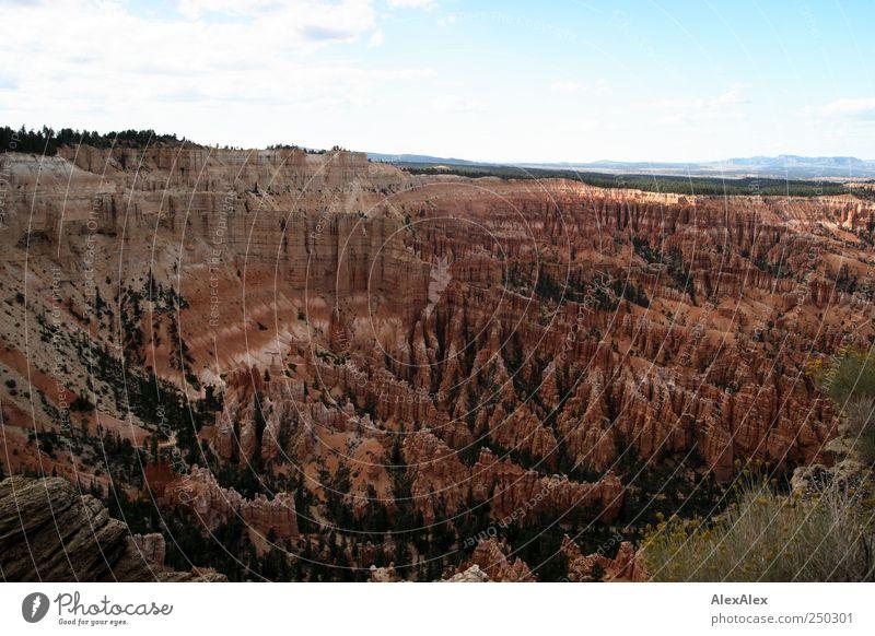 Bryce Canyon Theatre Himmel Natur alt blau rot Freude Ferien & Urlaub & Reisen Ferne Umwelt Berge u. Gebirge Landschaft Sand Stein Freizeit & Hobby Ausflug wandern