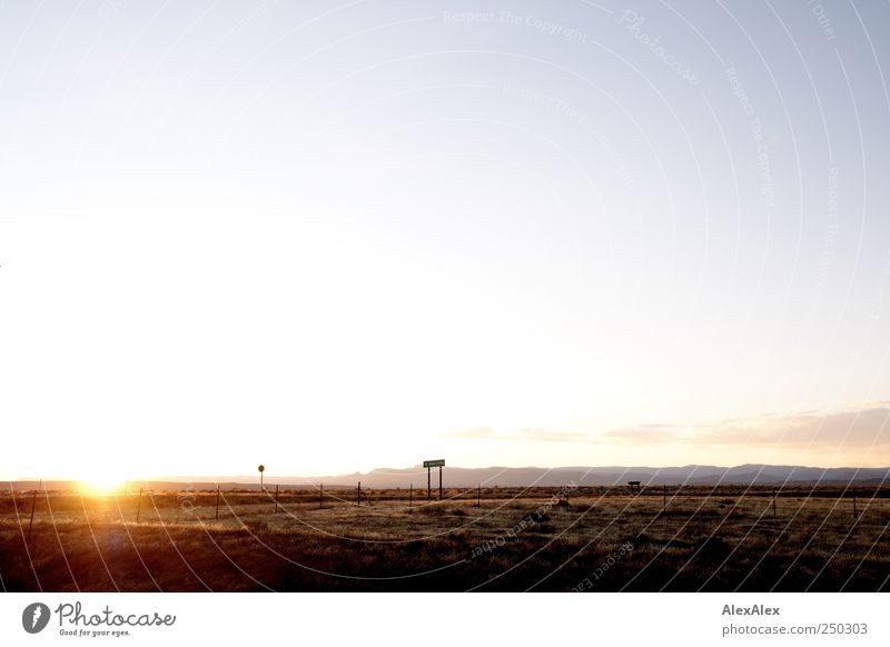 Gegenlicht im Nirgendwo Natur blau Ferien & Urlaub & Reisen ruhig Ferne gelb Berge u. Gebirge Landschaft Gras Sand gold Ausflug Abenteuer groß frei Hoffnung
