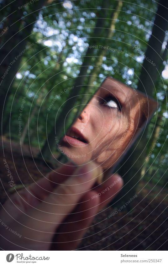 ich hab dich in der Hand Ausflug Mensch feminin Kopf Haare & Frisuren Gesicht Auge Mund Finger 1 Umwelt Natur Pflanze Baum Wald Locken beobachten Blick Spiegel