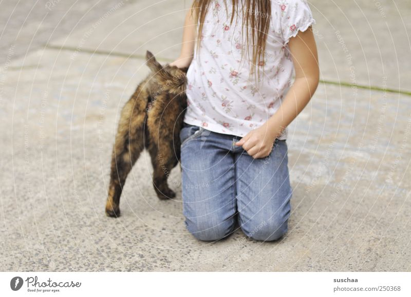 katzenpo .. Mädchen Kindheit Haare & Frisuren Hand 1 Mensch 3-8 Jahre Tier Haustier Katze Beton berühren Sympathie Tierliebe Katzenpo Beine Arme knien T-Shirt