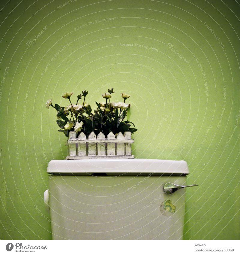 klodeko grün Blume Stil Wohnung außergewöhnlich Design Häusliches Leben Dekoration & Verzierung Lifestyle einzigartig Bad Kitsch Toilette Möbel trashig trendy