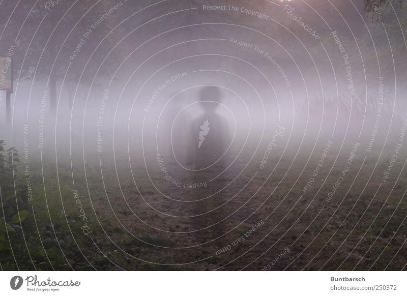 Dein Weg nach Terabitia Kind Junge 1 Mensch Nebel Fußweg stehen warten dunkel gruselig Traurigkeit Trauer Sehnsucht Einsamkeit Angst Vergänglichkeit