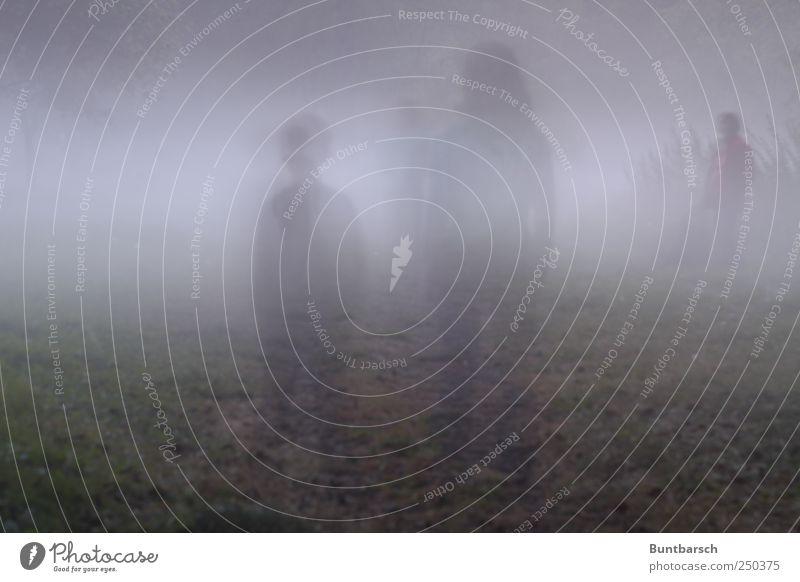 wieder in Terabitia Mensch Kind Mädchen Junge Frau Erwachsene Mutter Familie & Verwandtschaft Kindheit 3 Nebel stehen warten dunkel gruselig Surrealismus