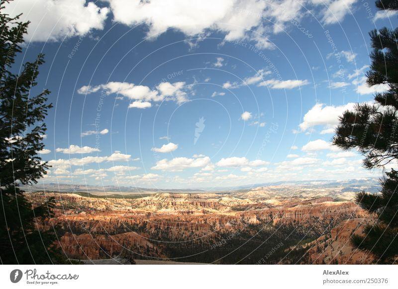 Bryce Canyon für faule Wanderer Himmel Natur blau Baum rot Wolken Ferne Wald Berge u. Gebirge Sand Stein Horizont Ausflug wandern Felsen groß