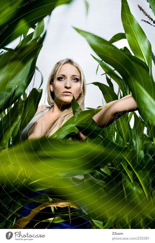 Lost Mensch Natur Jugendliche grün schön Pflanze Sommer dunkel Landschaft Stil Erwachsene Feld blond Angst elegant ästhetisch