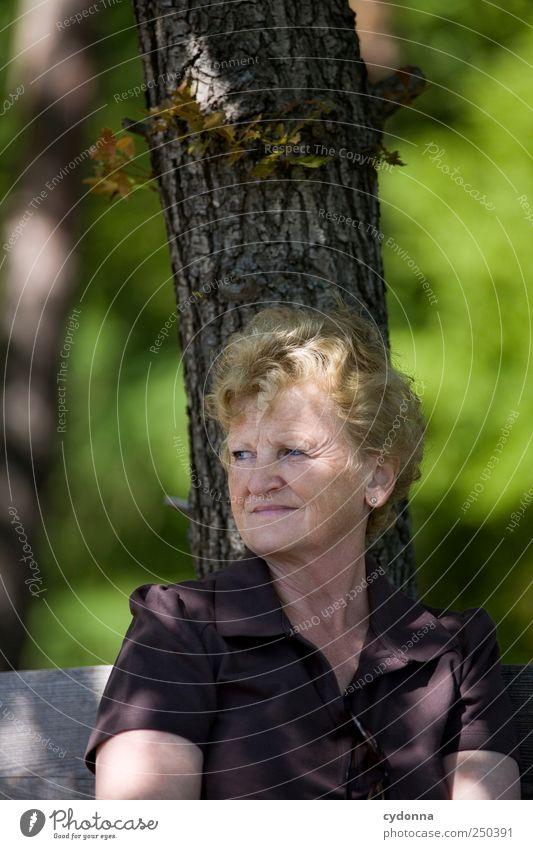 Alles gut. Mensch Frau Natur Baum ruhig Erwachsene Erholung Umwelt Leben Senior Freiheit träumen Gesundheit Zeit Zufriedenheit Freizeit & Hobby