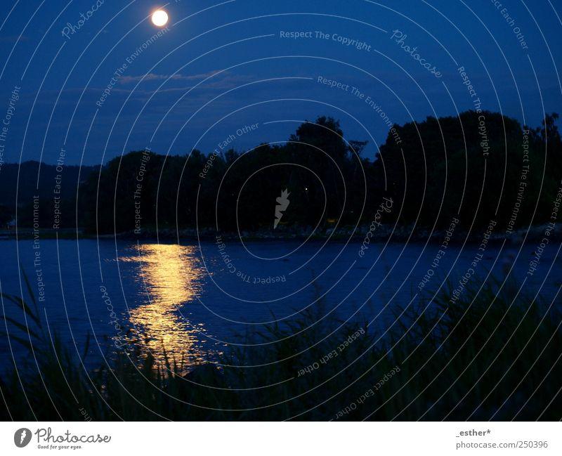 shining sea Freiheit Meer Natur Wasser Nachthimmel Horizont Mond Vollmond Küste Ostsee blau ruhig Farbfoto Außenaufnahme Menschenleer Silhouette