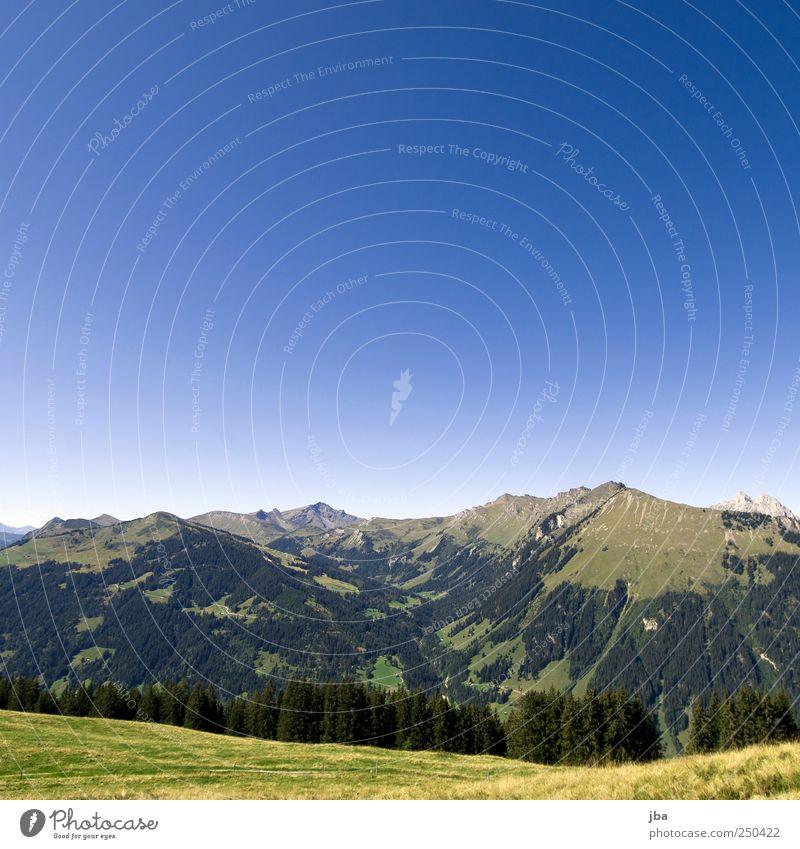 Bergidylle II Natur blau Sommer Ferien & Urlaub & Reisen ruhig Erholung Wiese Berge u. Gebirge Landschaft Felsen wandern authentisch Alpen beobachten Schweiz Gipfel