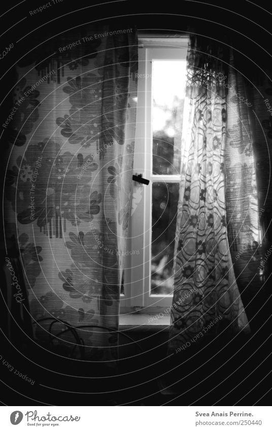 fenster zur seele. Vorhang Fenster Fensterscheibe Fensterladen Fensterbrett Fensterrahmen Gardine dunkel retro Heimweh Fernweh wohnlich Blumenmuster