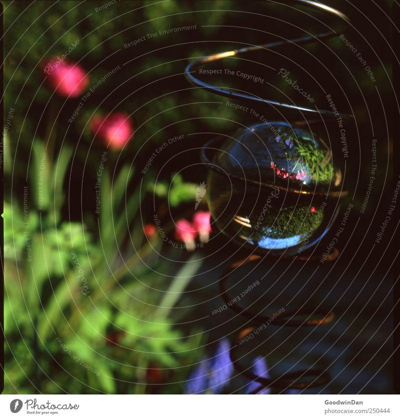 Dreh dich. Umwelt Natur Wetter Schönes Wetter Garten Mobile Spirale Glaskugel Rost gut hell Farbfoto Außenaufnahme Detailaufnahme Experiment Menschenleer Tag