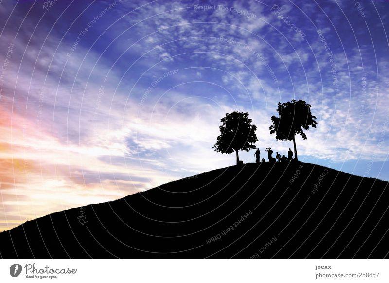 Bergfest Mensch blau Sommer Baum Farbe Wolken schwarz Erwachsene Leben Bewegung Menschengruppe Feste & Feiern Stimmung Tanzen maskulin Fröhlichkeit