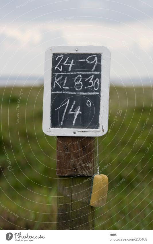 Der Sommer ist vorbei Strand Meer Ostsee Klima Tafel Schilder & Markierungen Temperatur einzeln Schwamm Holzschild Natur Farbfoto Außenaufnahme Menschenleer