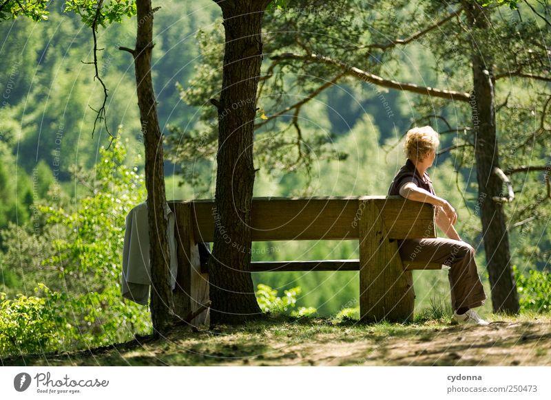 Rast Mensch Frau Natur Baum Ferien & Urlaub & Reisen Sommer ruhig Erwachsene Wald Ferne Erholung Umwelt Landschaft Leben Senior Freiheit