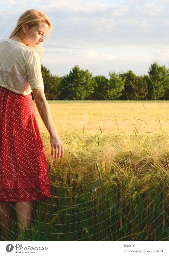 Kornfeld Zufriedenheit ruhig Mensch feminin Junge Frau Jugendliche 1 18-30 Jahre Erwachsene Landschaft Sommer Schönes Wetter Nutzpflanze Feld Mode Kleid blond