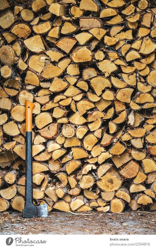 Holzhaufen zum Verbrennen und Axten Design Winter Arbeit & Erwerbstätigkeit Landwirtschaft Forstwirtschaft Industrie Menschengruppe Kunst Umwelt Natur Erde Baum