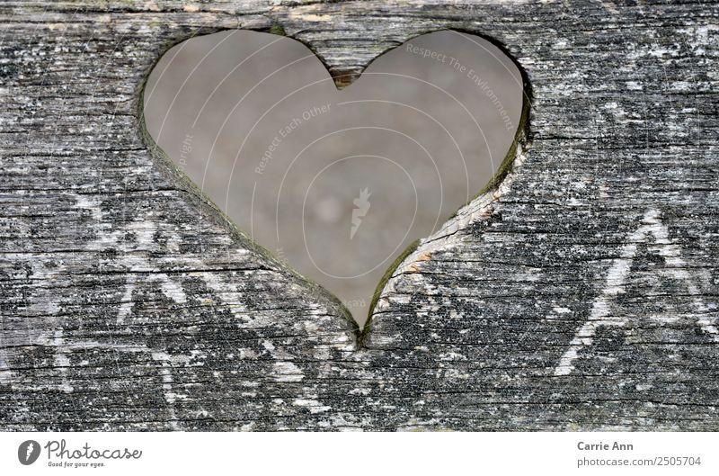 Blick durch das Herz Umwelt Holz beobachten Liebe träumen Traurigkeit schön natürlich grau weiß Gefühle Glück Geborgenheit Freundschaft Verliebtheit Romantik