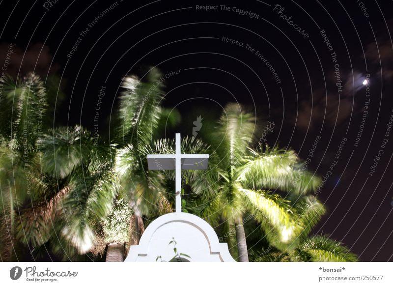 iGod Nachthimmel Mond Pflanze Baum Palme Garten Park Kirche Bauwerk Sehenswürdigkeit Kreuz Bewegung leuchten dunkel exotisch historisch Gefühle Vertrauen Güte