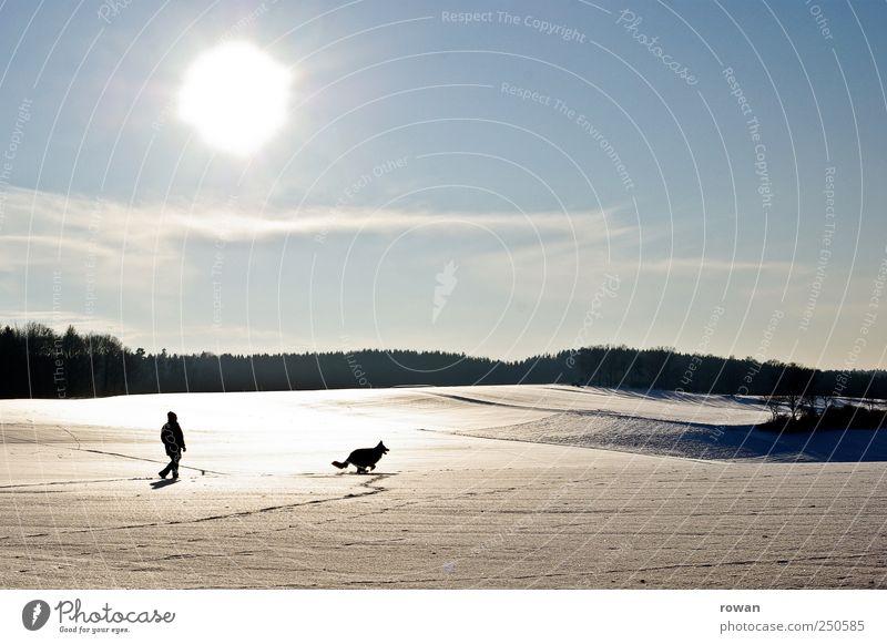 winterspaziergang Wohlgefühl Erholung Spielen Ausflug Winter Schnee Winterurlaub wandern Mensch maskulin Mann Erwachsene 1 Landschaft Wolkenloser Himmel Sonne