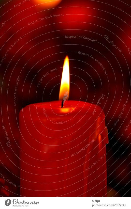 Kerzendekoration Design Glück Leben Dekoration & Verzierung Tisch Feste & Feiern Weihnachten & Advent Pflanze Herbst Blume Holz Ornament glänzend hell natürlich