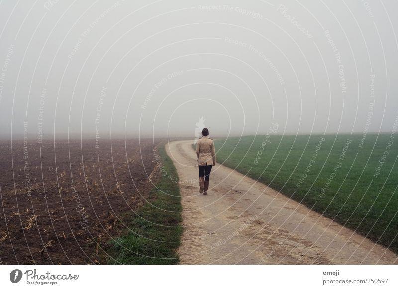Reise ins Nichts Mensch Natur Einsamkeit Umwelt Herbst kalt Landschaft grau Wege & Pfade Feld gehen Nebel laufen leer trist Spaziergang