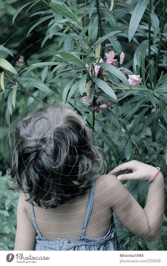 Dufterlebnis Garten Mensch Kind Mädchen Kindheit Haare & Frisuren Rücken 1 3-8 Jahre Natur Pflanze Schönes Wetter Blatt Blüte Grünpflanze Kleid brünett