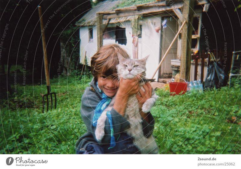 poor cat Katze Kind Junge Amerika Frankreich würgen