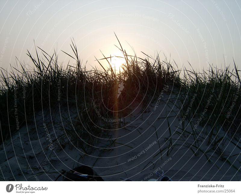Der Tag am Meer Strand Dämmerung Zusammensein Licht Sonne Sand Romatik Wasser Wind Natur