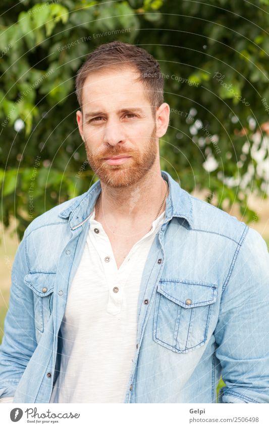 Porträt eines Gelegenheitstyps Lifestyle Stil Glück Haare & Frisuren Gesicht Erholung Sommer Mensch maskulin Junge Mann Erwachsene Natur Park Mode Hemd