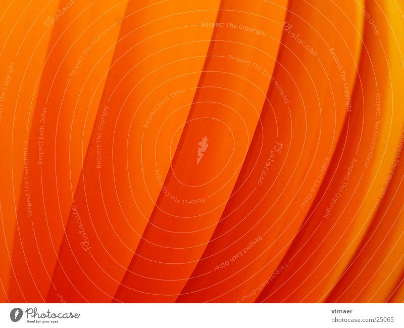 Objekt Orange Lampe orange Wellen Häusliches Leben Mond Verlauf Lamelle