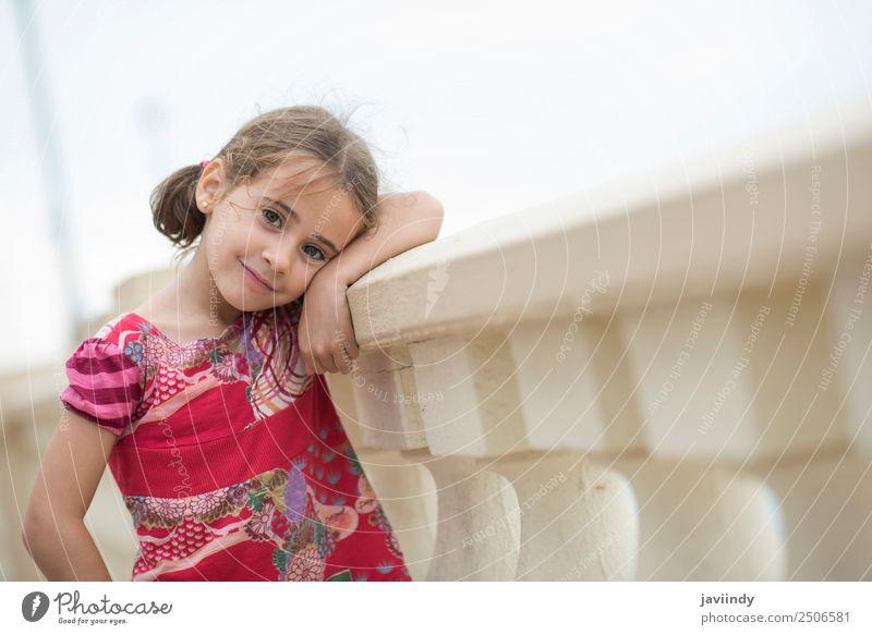 Bezauberndes kleines Mädchen, gekämmt mit Zöpfen. Lifestyle Freude Glück schön Gesicht Sommer Kind Mensch Kleinkind Frau Erwachsene Kindheit 1 3-8 Jahre Natur