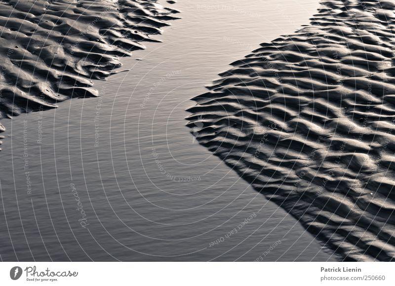 Spiekeroog | Illusion Strand Meer Wellen Umwelt Natur Landschaft Urelemente Erde Sand Wasser Wetter Schönes Wetter Küste Nordsee nass Rippeln Schwarzweißfoto