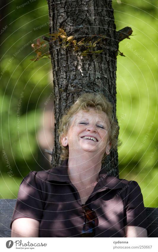 Frei Mensch Frau Natur Baum Sommer Freude Erwachsene Umwelt Leben Senior Gefühle Glück lachen Zufriedenheit Freizeit & Hobby Ausflug