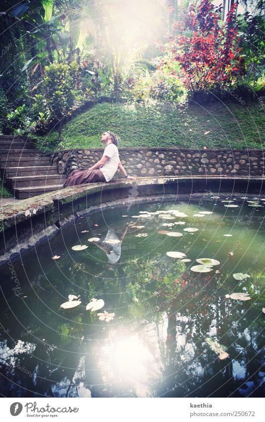 sunny side up Mensch Natur Jugendliche Wasser grün Sommer Blatt Wald Wand Mauer Park sitzen Treppe maskulin T-Shirt Romantik