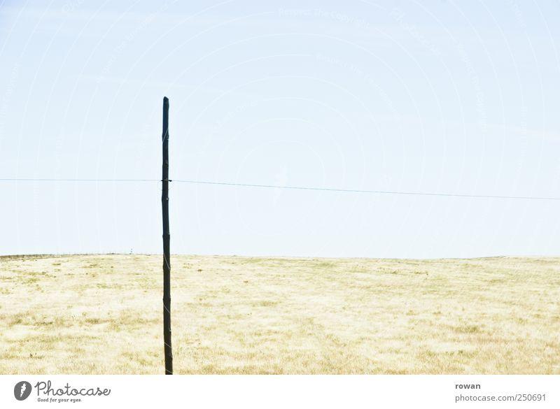 _|___ Natur Sommer Wiese Landschaft Gras hell Linie Feld Kabel heiß Schönes Wetter Strommast Grasland Holzpfahl Portugal Alentejo