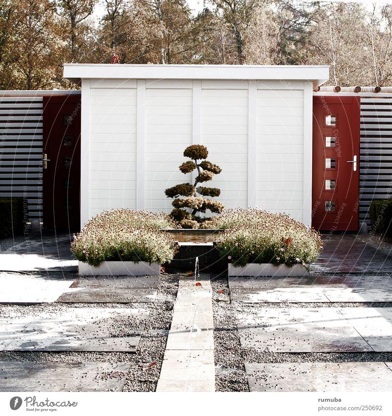 Gartenpavillon Himmel Natur weiß Baum Pflanze Tier Wand Landschaft Architektur Garten grau Mauer Park braun Tür Sträucher