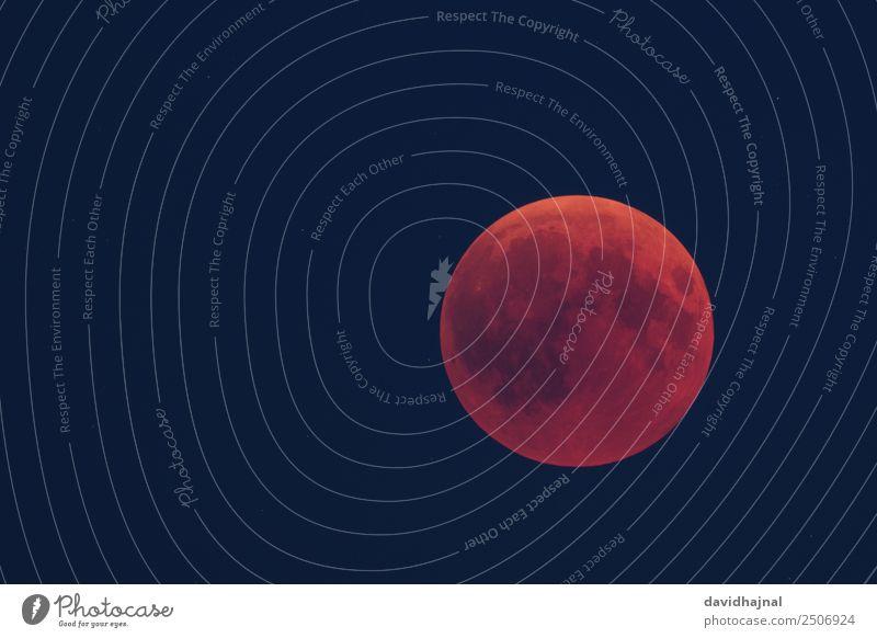 Mondfinsternis 27. Juli 2018: Abenddämmerung Natur Sommer Ferne 18-30 Jahre Umwelt Freiheit Deutschland Europa ästhetisch Abenteuer Stern beobachten