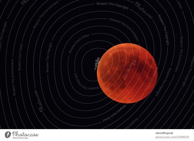 Mondfinsternis 27. Juli 2018: Totalität Himmel Natur Sommer rot 18-30 Jahre Umwelt Deutschland Technik & Technologie Europa Abenteuer beobachten