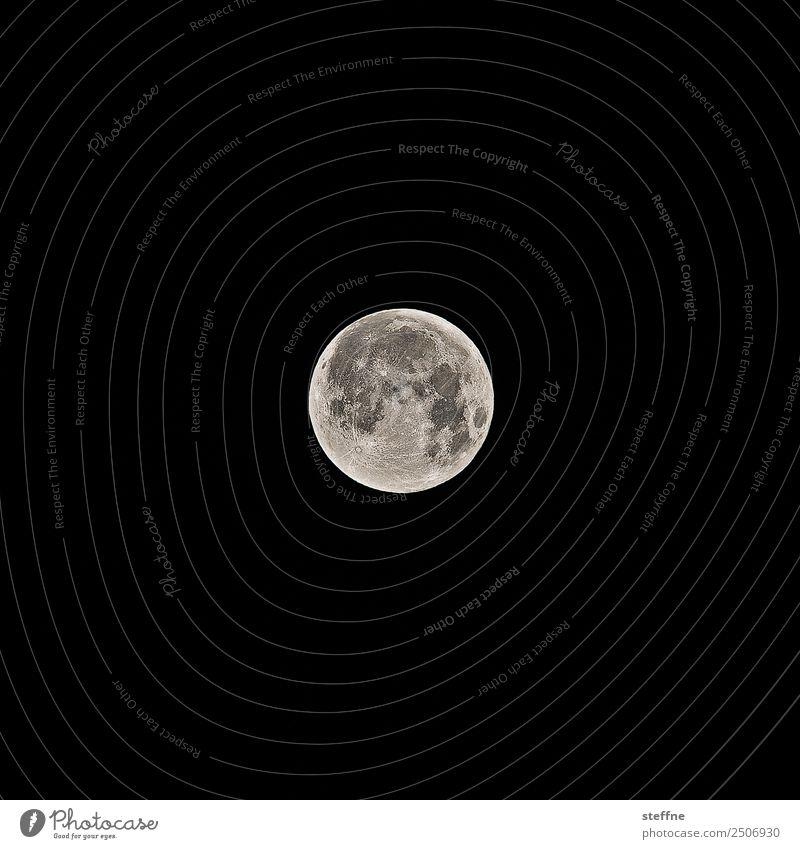 Vollmond, kurz nach der Mondfinsternis Natur Zukunft Mondsüchtig Astrologie Werwolf Schlafstörung Farbfoto Außenaufnahme Menschenleer Textfreiraum links