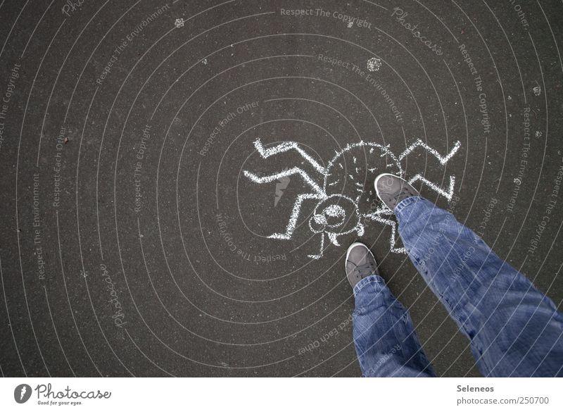 Pfui Spinne Mensch Tier dunkel Spielen Beine Fuß Schuhe Freizeit & Hobby natürlich stehen bedrohlich Jeanshose Tiergesicht berühren Kreide Ekel
